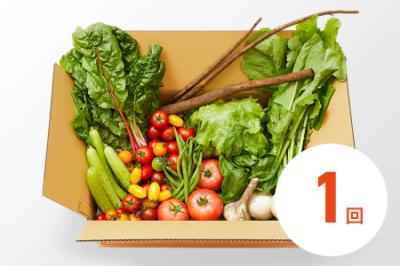 お野菜ボックス(1回分)