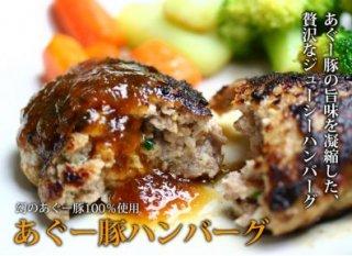 【工場直送】沖縄あぐー豚ハンバーグセット(冷凍120g×8パック)