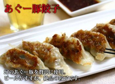 【工場直送】沖縄あぐー豚ハンバーグ・餃子セット