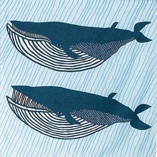 水も運べる!撥水加工ふろしき アクアドロップ ナガスクジラ ブルー
