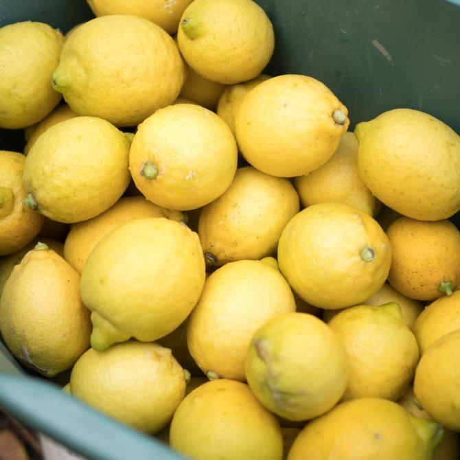 レモン 1kg