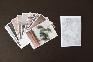椿野恵里子 花と果実ポストカード2022