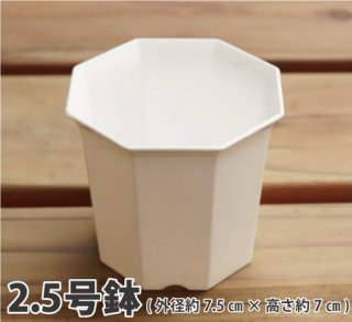 八角プラ鉢 2.5号(白)