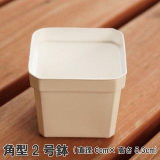 角型プラ鉢 2号(白)