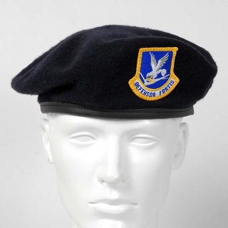 US.エアフォース、ディフェンサー、ベレー帽(新品)ワッペン付 M51NB