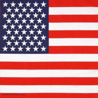 USA.フラッグ、バンダナ(新品)201