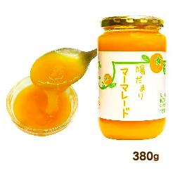 廃盤【陽だまりファーム】陽だまりマーマレード 380g