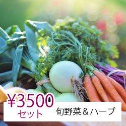 【ヤママツ鈴木農園】シゲさんオススメ旬野菜&ハーブセット3,500円