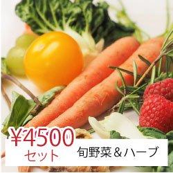 【ヤママツ鈴木農園】シゲさんオススメ旬野菜&ハーブセット4,500円