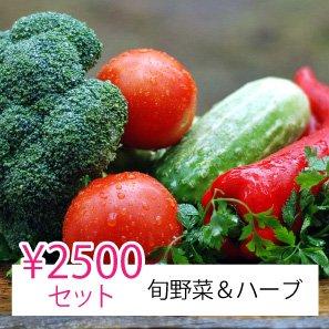 【ヤママツ鈴木農園】シゲさんオススメ旬野菜&ハーブセット2,500円