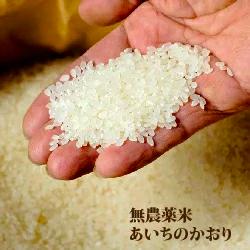 【農健】無農薬米 あいちのかおり 白米