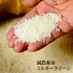 【農健】減農薬米 ミルキークイーン 玄米