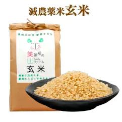 【山ちゃんファーム】山ちゃんファーム米 減農薬米 玄米1袋(5kg)
