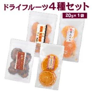 【健正園】ドライフルーツ 4種類(いちじく、次郎柿、みかん、甘夏みかん)