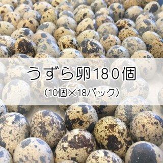 【浜名湖ファーム】うずら生卵 180個 (10個入×18パック)