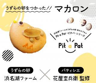 【浜名湖ファーム】うずら卵を使ったPit a pat マカロン 6個入り 送料無料