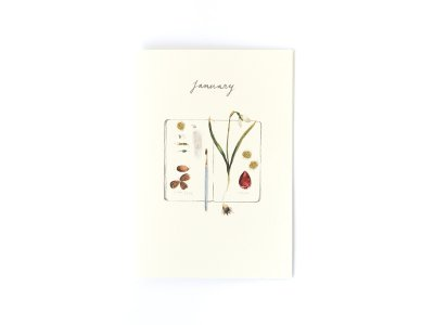 Birthstones and Flowers Card / January