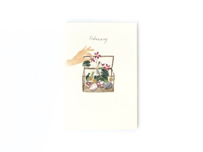 Birthstones and Flowers Card / February