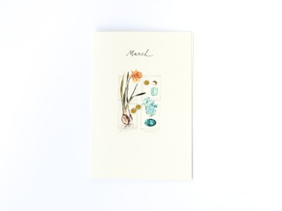 Birthstones and Flowers Card / March