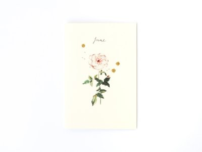 Birthstones and Flowers Card / June