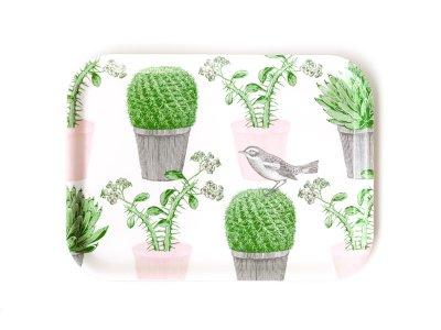 Tray / Cactus&Bird