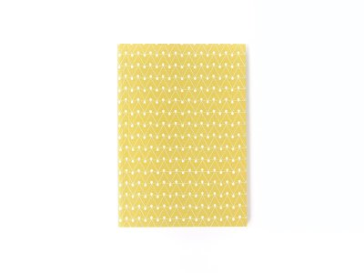 Layflat Notebook / Dash (Leaf Green)