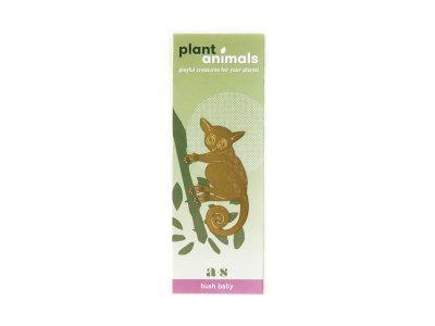 Plant Animals / Bush Baby