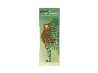 Plant Animals / Racoon