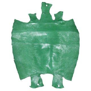 プレミアム・レザー トカゲ革/Lizard(エメラルドグリーン)