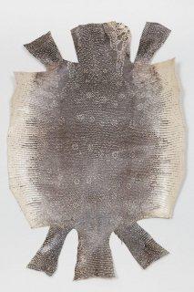 トカゲ革/Lizard(ナチュラル)L-65