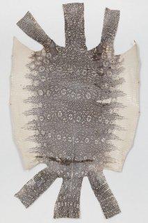 トカゲ革/Lizard(ナチュラル)L-43