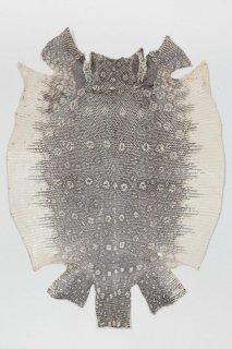 トカゲ革/Lizard(ナチュラル)L-19