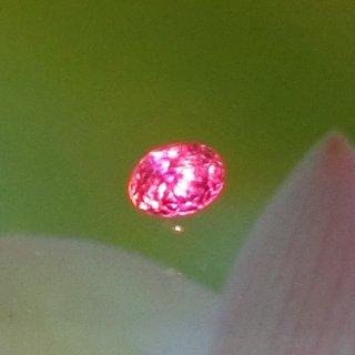 15年目で初のお色。<br>強い色彩オレンジーピンクの花火。<br>まさに女王のような<br>クイーンパパラチア0.78ct