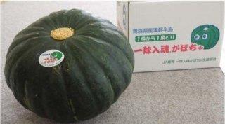 美味しいかぼちゃ 1個(約2kg)