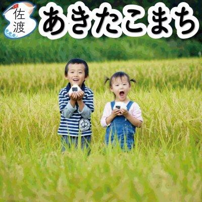 令和2年産 新潟県佐渡産あきたこまち 5kg【送料無料】【普通便】