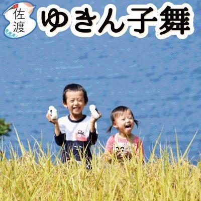 令和2年産 新潟県佐渡産ゆきんこ舞 20kg【送料無料】【普通便】