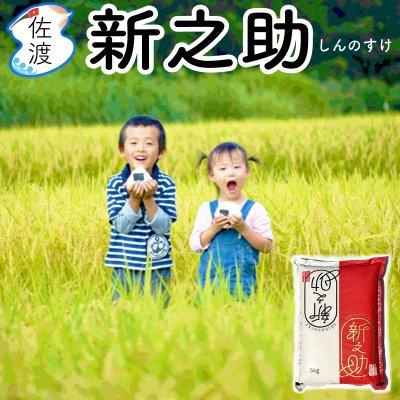 令和2年産 新潟県佐渡産新之助 15kg【送料無料】【普通便】