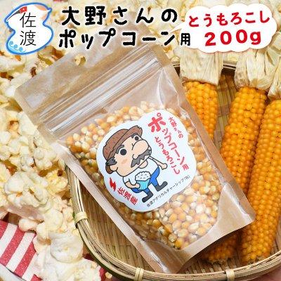 佐渡産ポップコーンの種 200g【普通便】