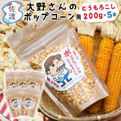 佐渡産ポップコーンの種_1kg(200g×5袋)【送料無料】【普通便】