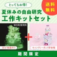 【送料無料】「光る!結晶づくり」「キャンディーポット貯金箱」セット