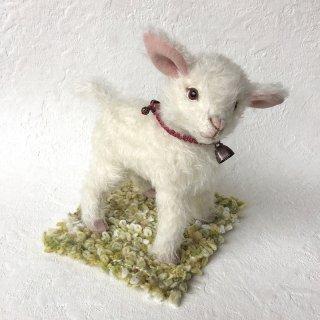 子山羊のAlm(アルム)