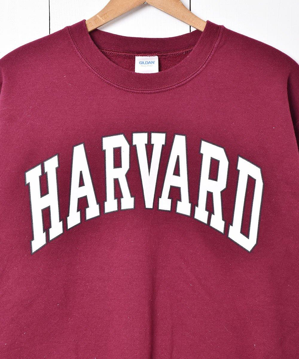 ハーバード大学 プリントスウェットサムネイル