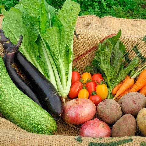 週に3セットのみ限定販売 有機無農薬野菜Sセット