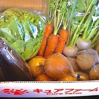 旬の野菜セット【限定5セット】