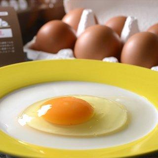 新鮮な100%朝産み卵!! 箱根西麓・三島市で育ったこだわりの鶏Lサイズ20個入り