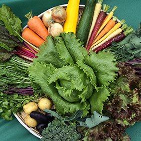 ふもとも野菜セットS <p></p>おまかせ5~6品詰め合わせ