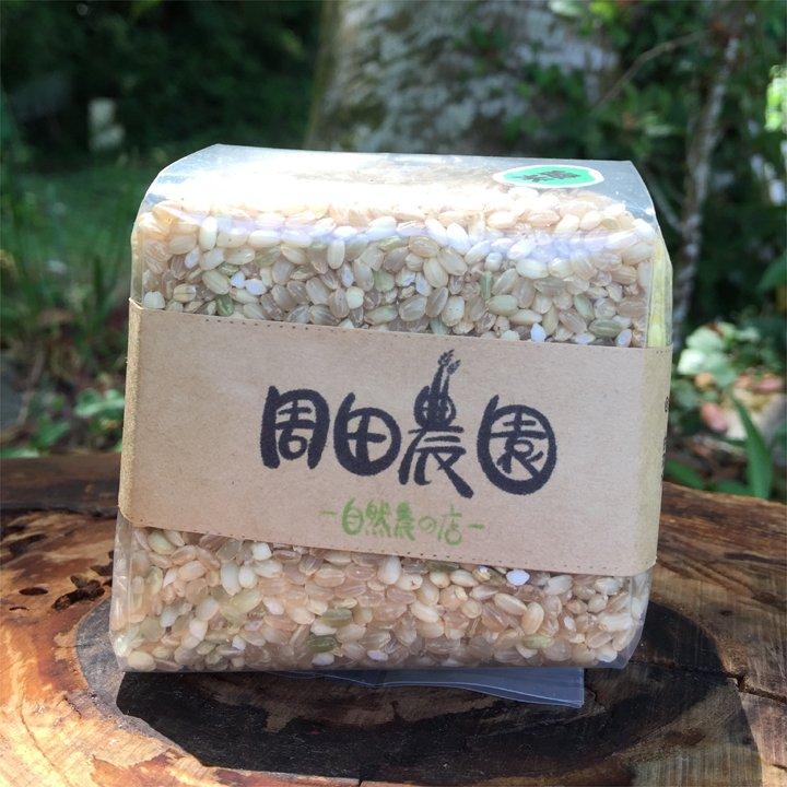 無農薬/無化学肥料の黒米300g×2袋、緑米300g×2袋セット