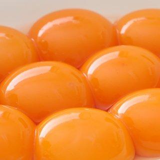平飼い・有精卵 富士の卵 30個(ケース入り・Lサイズ)