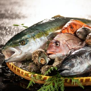 【送料無料】季節の天然鮮魚 3種(おまかせ匠の鮮魚セット)