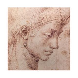 ジクレ—版画 ミケランジェロ 『Testa Femminile Di Profilo』 アートシート 送料無料